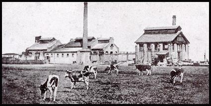 Buskruitfabriek
