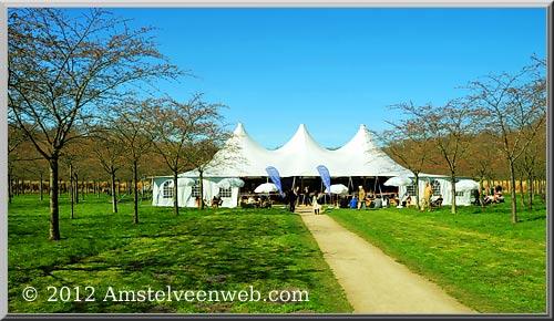 12de Kersenbloesem Festival