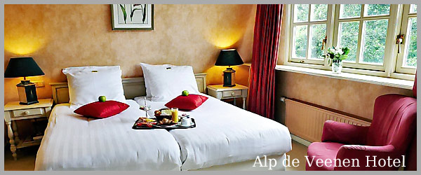 Alp de Veenen Hotel - room photo 8726371